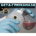 Бета-глюканаза